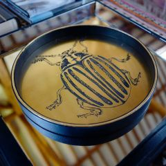 Faux Leather Scarab Beetle Tray