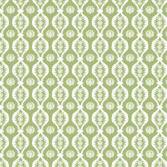 Georgie Girl G Fabric