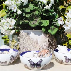 Fine Bone China Butterfly Bowl