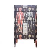 Vintage Upcycled Anatomy Chest of Drawers