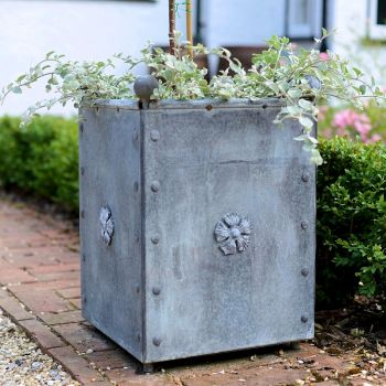 Classic Georgian Style Steel Planters with Tudor Rose Decor