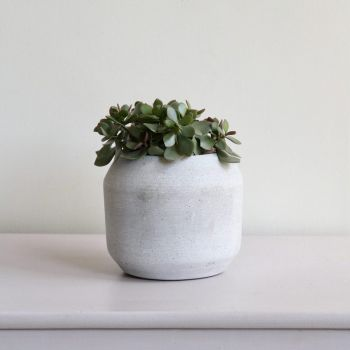 Handmade Contemporary Concrete Plant Pot
