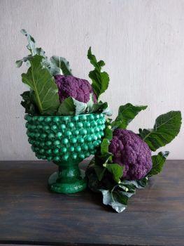 pinecone bowl agata treasures