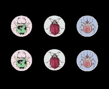 Mixed Set of 6 Beetle Coasters