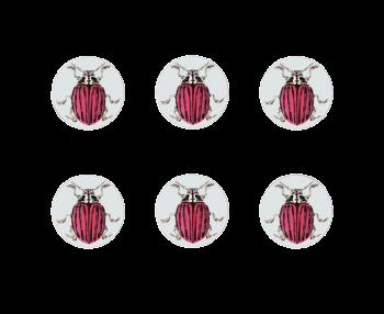 Ophelia Coasters Set of 6 (Red Beatle)