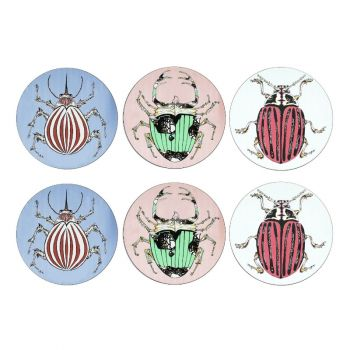 Set of 6 Mix Beetle Placemats